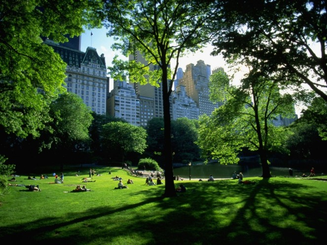 World_USA_New_York_Central_Park__NY_021678_