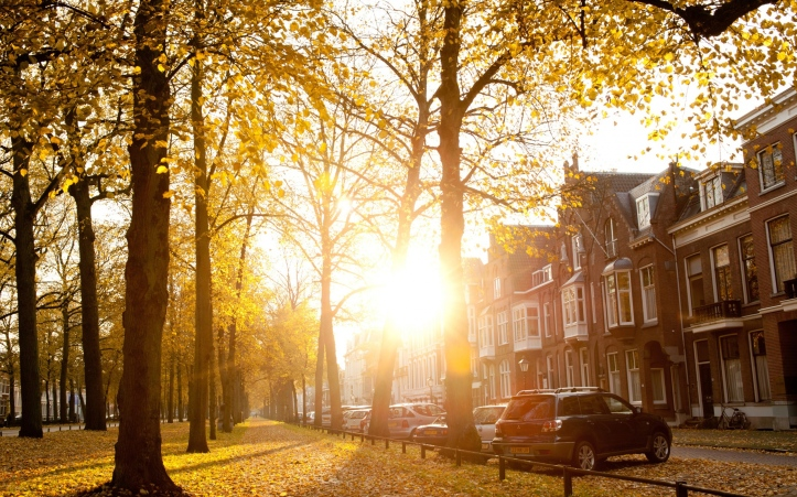 world_netherlands_autumn_day_in_utrecht_036729_ (1)